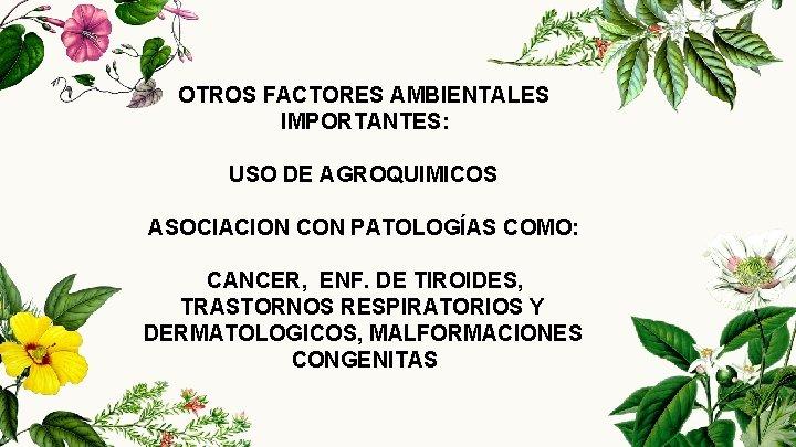 OTROS FACTORES AMBIENTALES IMPORTANTES: USO DE AGROQUIMICOS ASOCIACION CON PATOLOGÍAS COMO: CANCER, ENF. DE