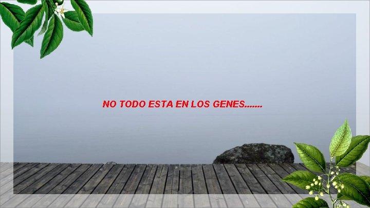 NO TODO ESTA EN LOS GENES. . . .
