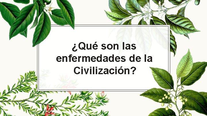 ¿Qué son las enfermedades de la Civilización?