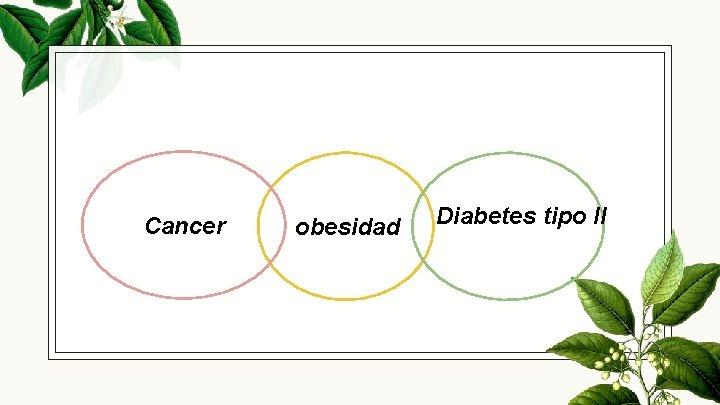 Cancer obesidad Diabetes tipo ll