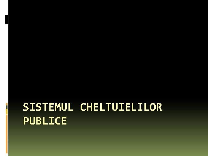 SISTEMUL CHELTUIELILOR PUBLICE