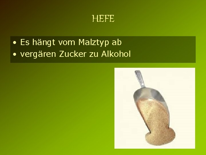 HEFE • Es hängt vom Malztyp ab • vergären Zucker zu Alkohol