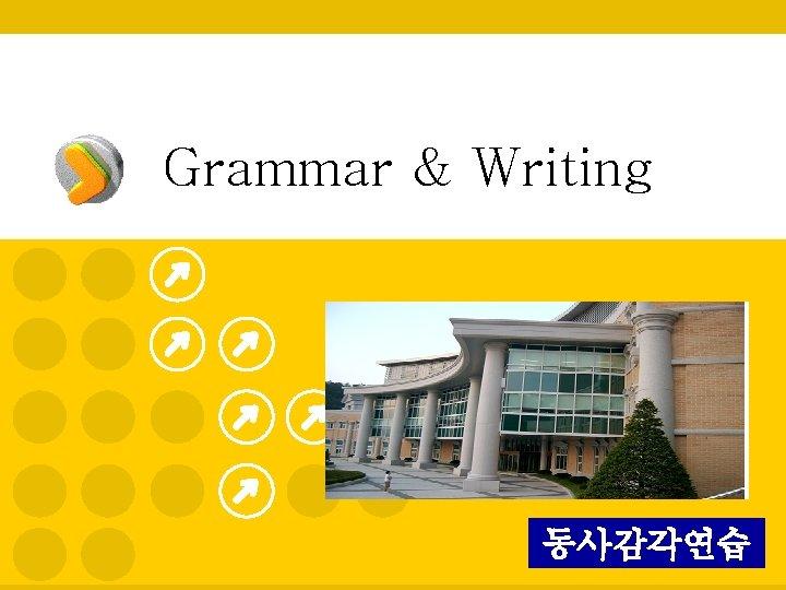 Grammar & Writing 동사감각연습