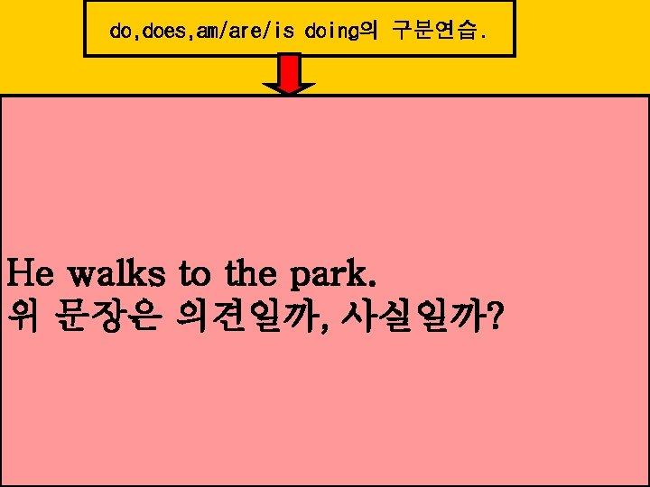 do, does, am/are/is doing의 구분연습. He walks to the park. 위 문장은 의견일까, 사실일까?