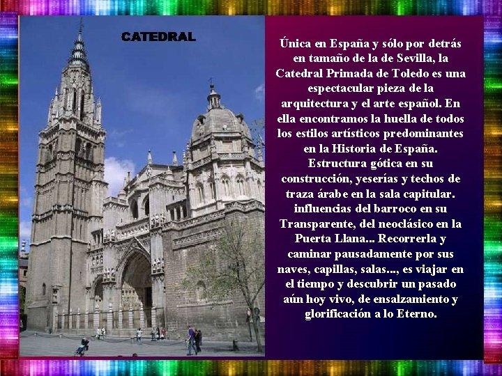 Única en España y sólo por detrás en tamaño de la de Sevilla, la