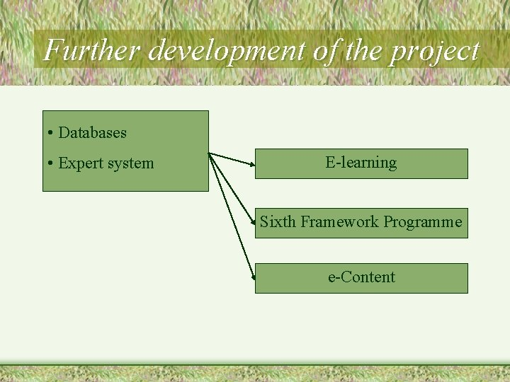 Further development of the project • Databases • Expert system E-learning Sixth Framework Programme