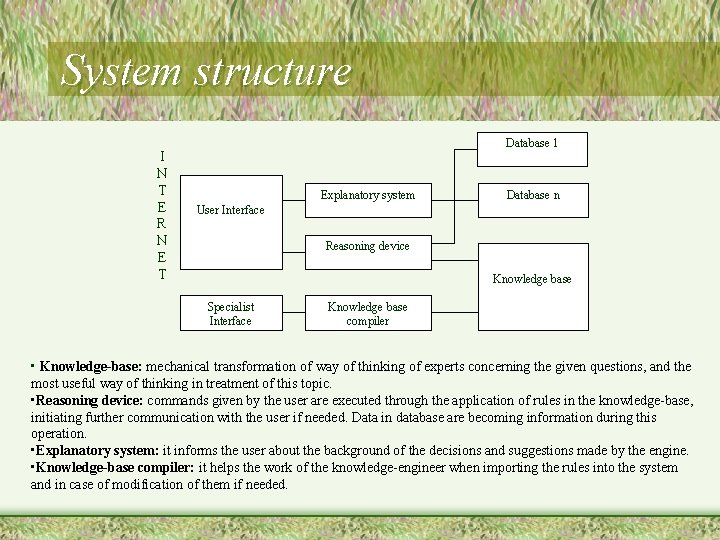 System structure I N T E R N E T Database 1 Explanatory system