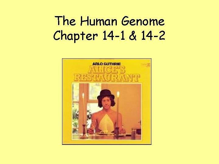 The Human Genome Chapter 14 -1 & 14 -2