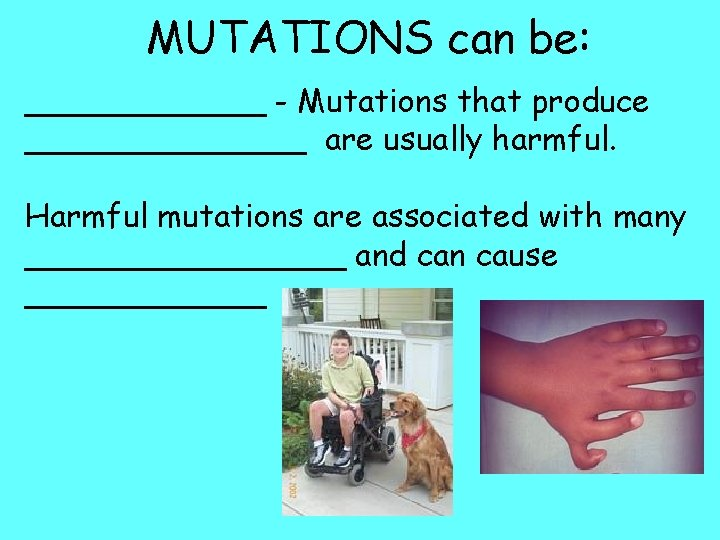 MUTATIONS can be: ______ - Mutations that produce _______ are usually harmful. Harmful mutations