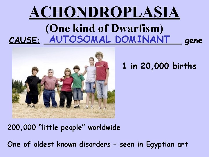 ACHONDROPLASIA (One kind of Dwarfism) AUTOSOMAL DOMINANT CAUSE: ______________ gene 1 in 20, 000