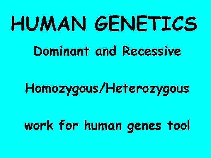 HUMAN GENETICS Dominant and Recessive Homozygous/Heterozygous work for human genes too!
