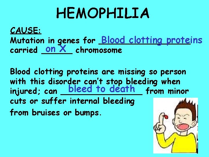 HEMOPHILIA CAUSE: Mutation in genes for _________ Blood clotting proteins on X chromosome carried