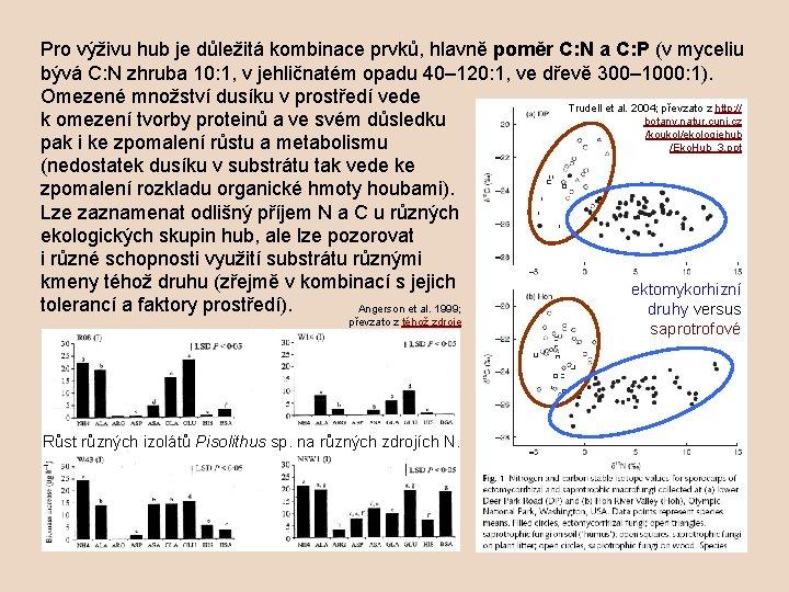 Pro výživu hub je důležitá kombinace prvků, hlavně poměr C: N a C: P