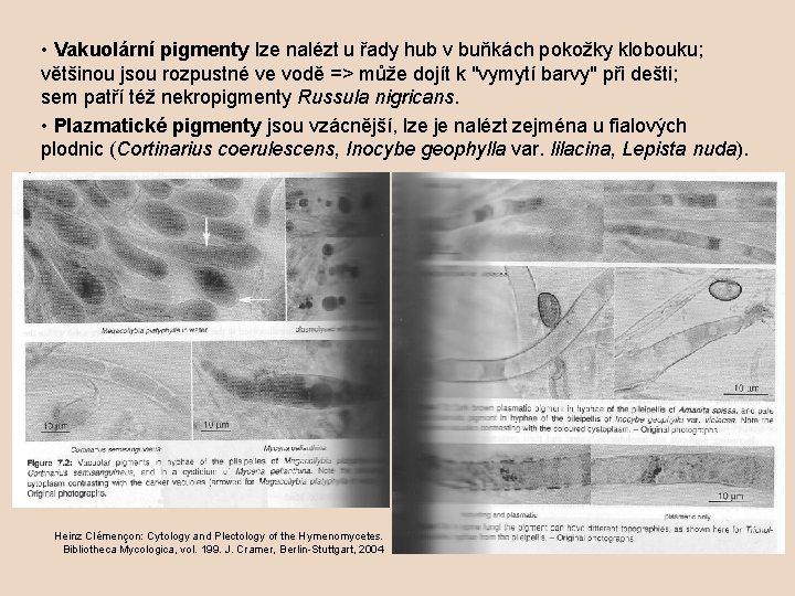• Vakuolární pigmenty lze nalézt u řady hub v buňkách pokožky klobouku; většinou