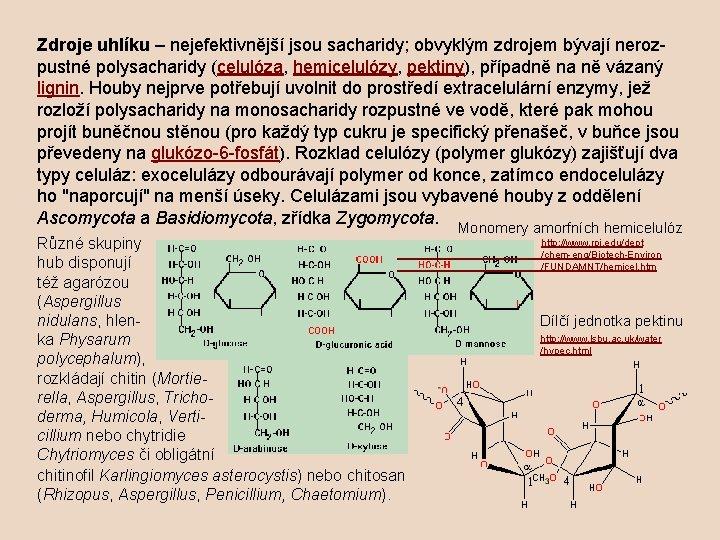 Zdroje uhlíku – nejefektivnější jsou sacharidy; obvyklým zdrojem bývají nerozpustné polysacharidy (celulóza, hemicelulózy, pektiny),