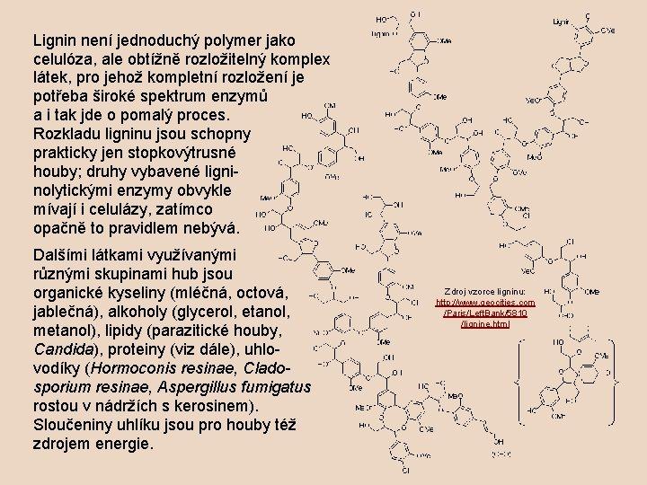 Lignin není jednoduchý polymer jako celulóza, ale obtížně rozložitelný komplex látek, pro jehož kompletní