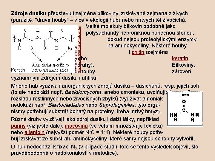 www. chm. bris. ac. uk /webprojects 2002/price/protein. htm Zdroje dusíku představují zejména bílkoviny, získávané