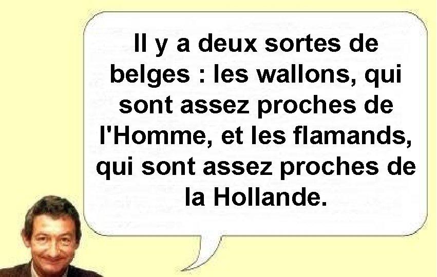 Il y a deux sortes de belges : les wallons, qui sont assez proches