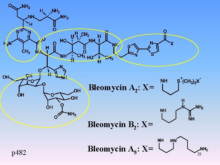 Bleomycin A 2: X= Bleomycin B 2: X= p 482 Bleomycin A 5: X=