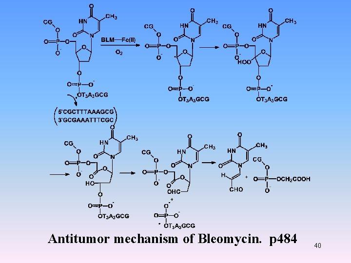 Antitumor mechanism of Bleomycin. p 484 40