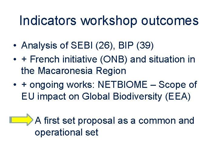 Indicators workshop outcomes • Analysis of SEBI (26), BIP (39) • + French initiative