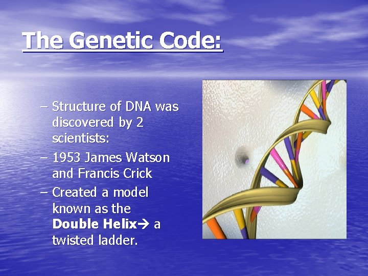 The Genetic Code: – Structure of DNA was discovered by 2 scientists: – 1953