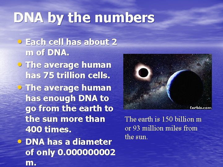 DNA by the numbers • Each cell has about 2 • • • m