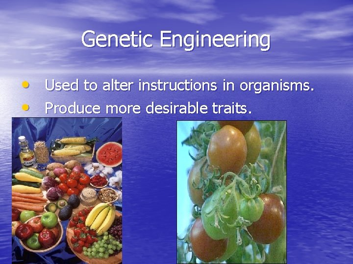 Genetic Engineering • Used to alter instructions in organisms. • Produce more desirable traits.