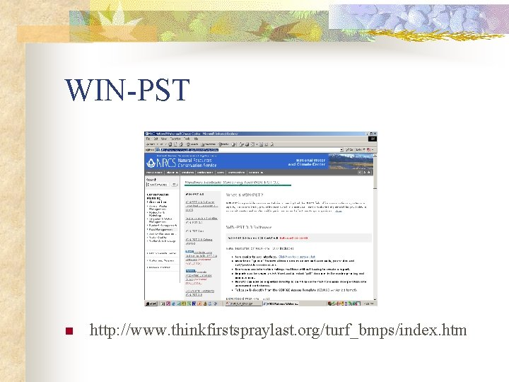 WIN-PST n http: //www. thinkfirstspraylast. org/turf_bmps/index. htm
