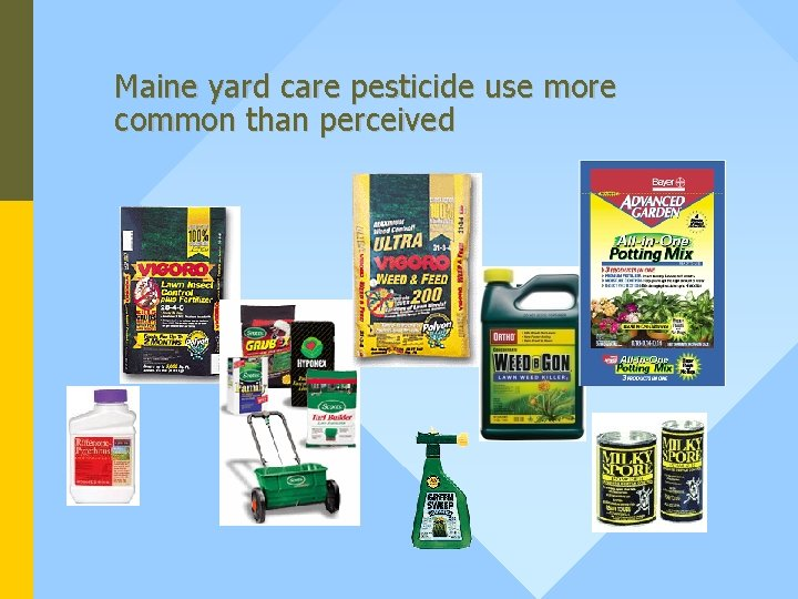 Maine yard care pesticide use more common than perceived