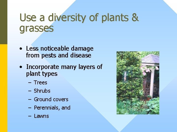 Use a diversity of plants & grasses • Less noticeable damage from pests and
