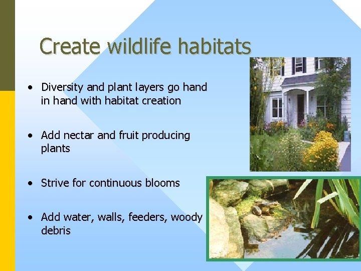 Create wildlife habitats • Diversity and plant layers go hand in hand with habitat