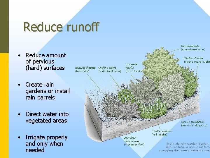 Reduce runoff • Reduce amount of pervious (hard) surfaces • Create rain gardens or