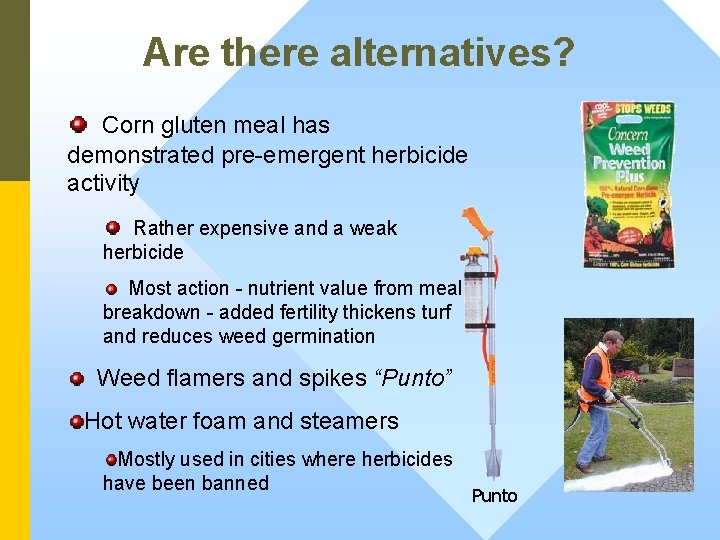 Are there alternatives? Corn gluten meal has demonstrated pre-emergent herbicide activity Rather expensive and