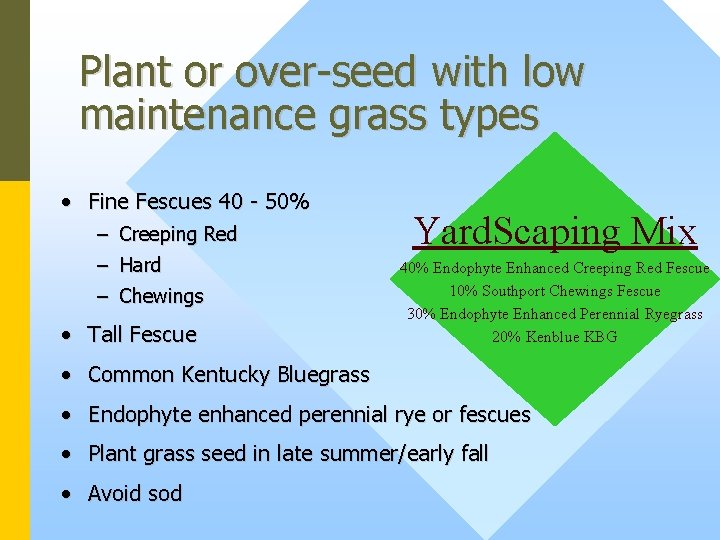 Plant or over-seed with low maintenance grass types • Fine Fescues 40 - 50%