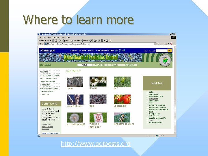 Where to learn more http: //www. gotpests. org