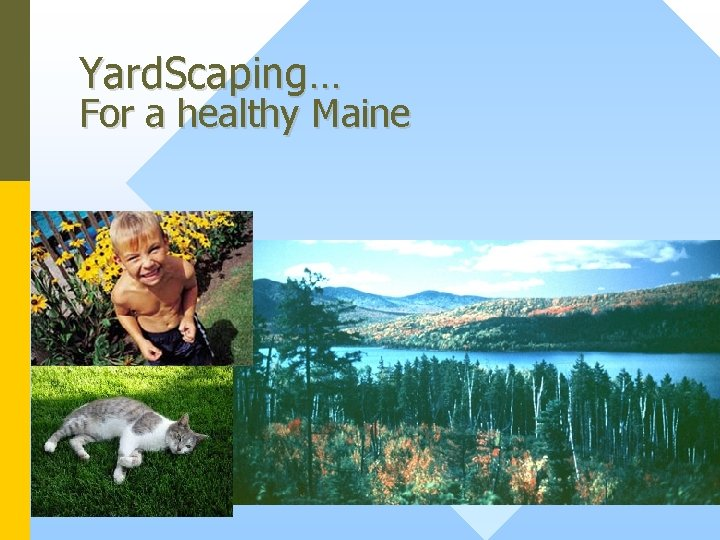 Yard. Scaping… For a healthy Maine