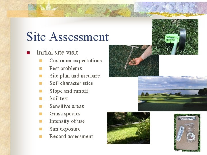 Site Assessment n Initial site visit n n n Customer expectations Pest problems Site