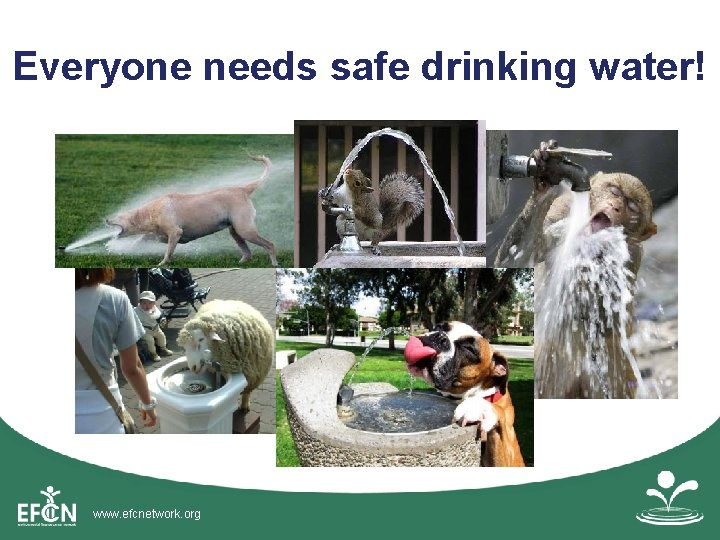Everyone needs safe drinking water! www. efcnetwork. org