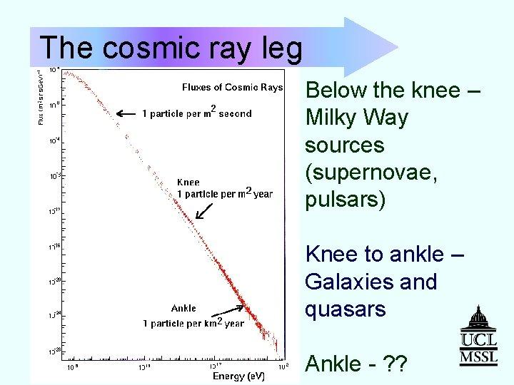 The cosmic ray leg Below the knee – Milky Way sources (supernovae, pulsars) Knee