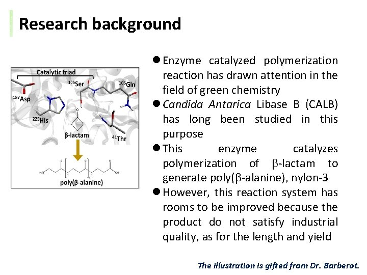 Research background l Enzyme catalyzed polymerization reaction has drawn attention in the field of