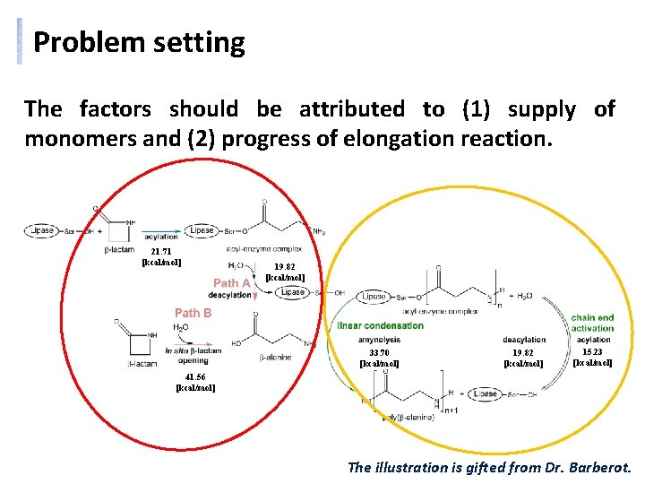 Problem setting The factors should be attributed to (1) supply of monomers and (2)