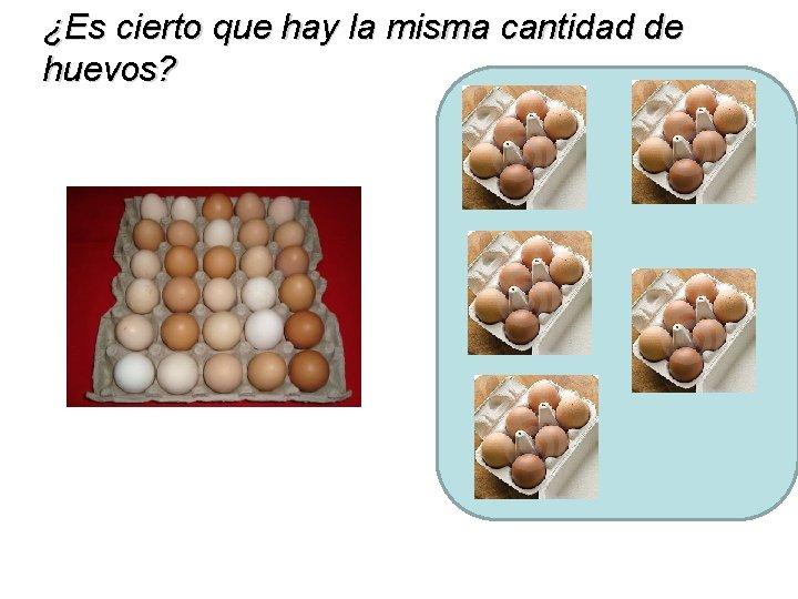 ¿Es cierto que hay la misma cantidad de huevos?