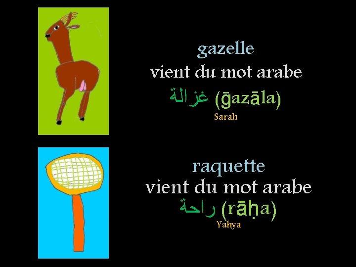 gazelle vient du mot arabe ( ﻏﺰﺍﻟﺔ ḡazāla) Sarah raquette vient du mot arabe