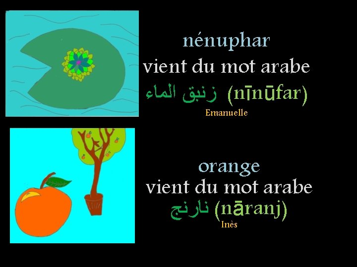 nénuphar vient du mot arabe ( ﺯﻧﺒﻖ ﺍﻟﻤﺎﺀ nīnūfar) Emanuelle orange vient du mot