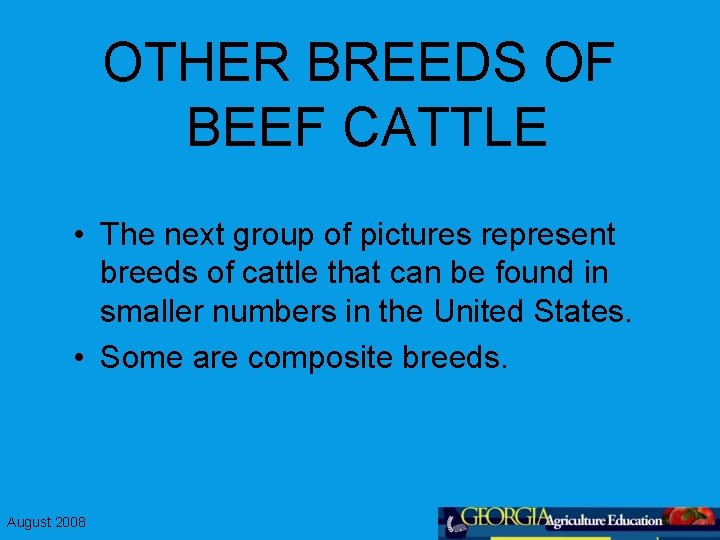 OTHER BREEDS OF BEEF CATTLE • The next group of pictures represent breeds of