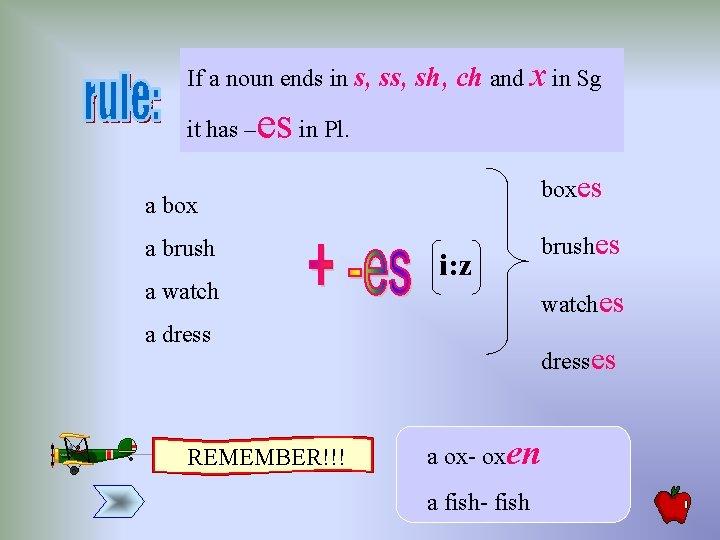 If a noun ends in s, sh, ch and x in Sg it has