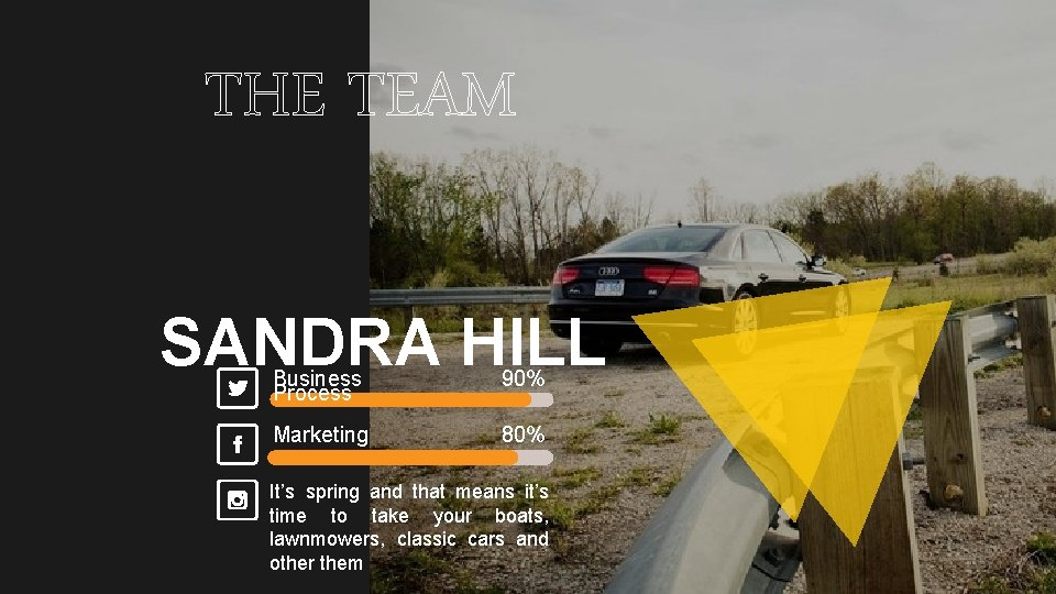 THE TEAM SANDRA HILL Business Process 90% Marketing 80% It's spring and that means