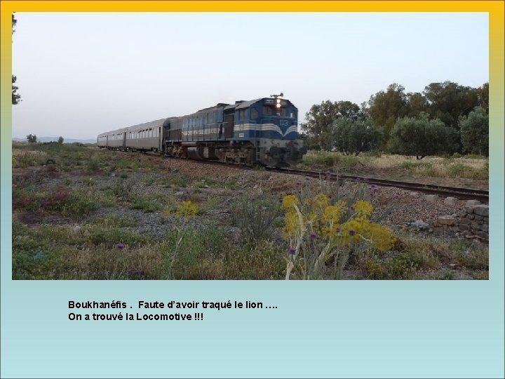 Boukhanéfis. Faute d'avoir traqué le lion …. On a trouvé la Locomotive !!!