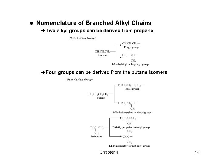 l Nomenclature of Branched Alkyl Chains èTwo alkyl groups can be derived from propane